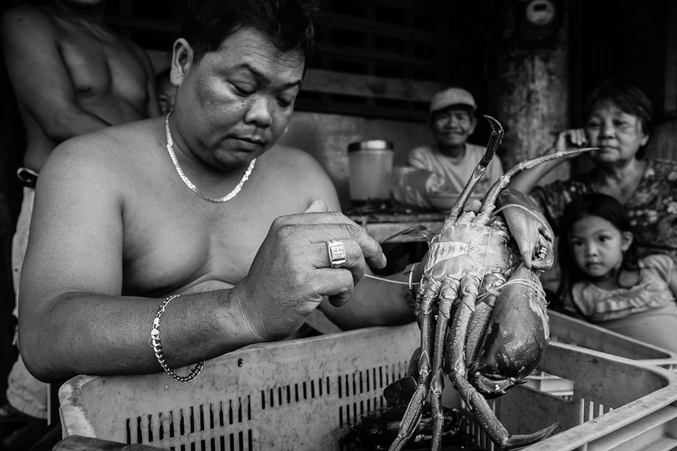 crabs being sorted and sold by weight