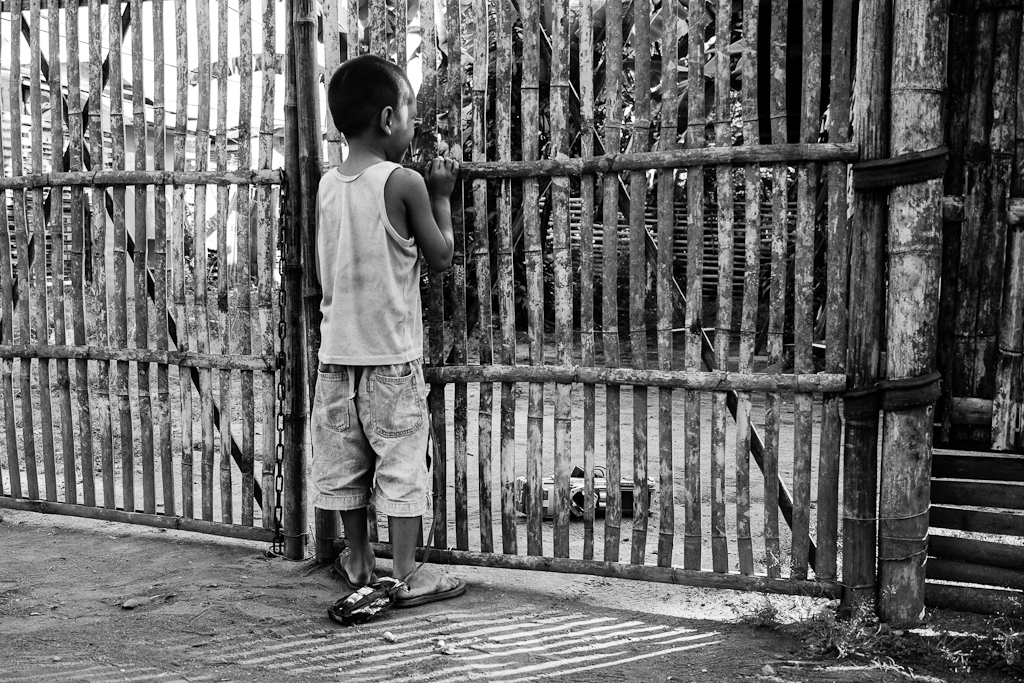 a boy peers into a yard from the gate